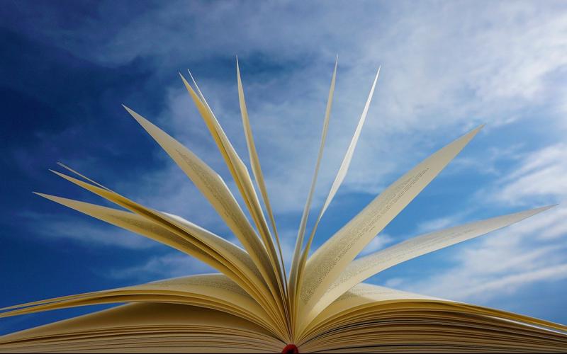Die Bezirksentscheidung des Vorlesewettbewerbs des Börsenvereins des deutschen Buchhandels wurde von der Stadtbibliothek Wolfsburg organisiert.